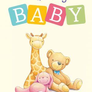 Naming Baby Book