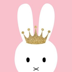 Ginger Monkey Pink Bunny with Crown Print