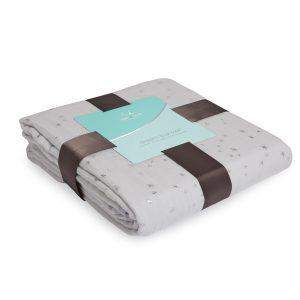 Aden + Anais Metallic Dream Blanket Charm Pkg