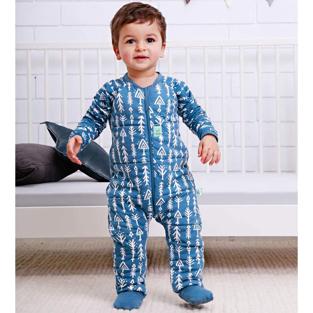 ceb96a025 ergoPouch Winter Sleep Suit 2.5tog