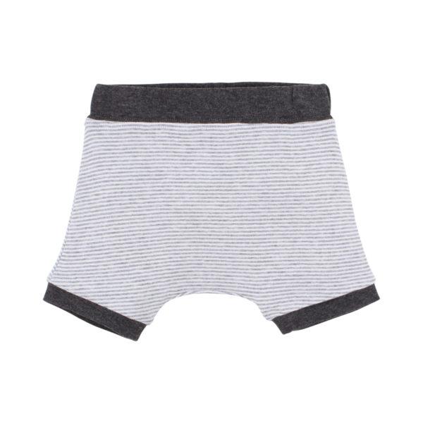 Bebe Henry Soft Shorts